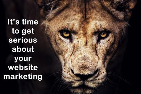 It's time to get serious about your website marketing with lion